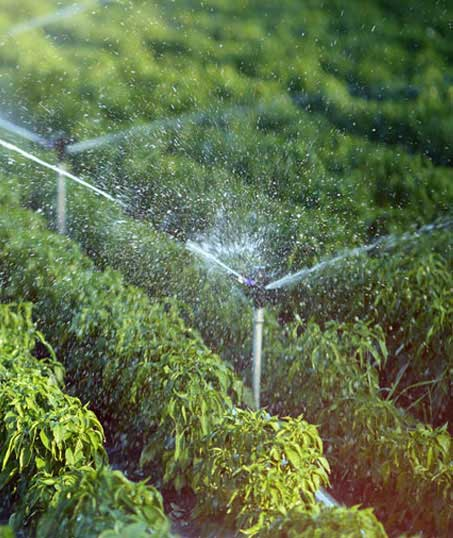 Happy House Construction LLC Residential Irrigation System Repair