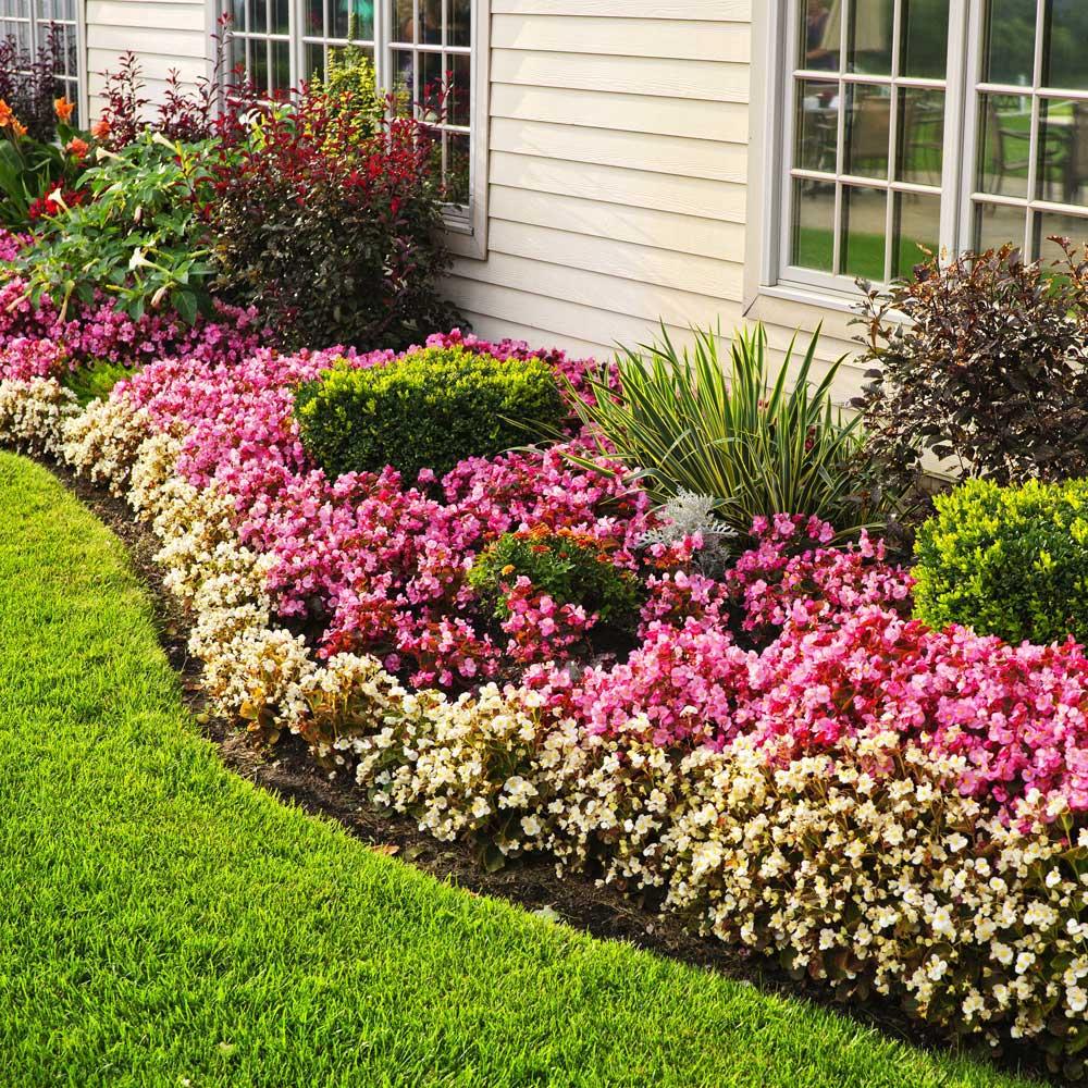 Residential Garden Design Service