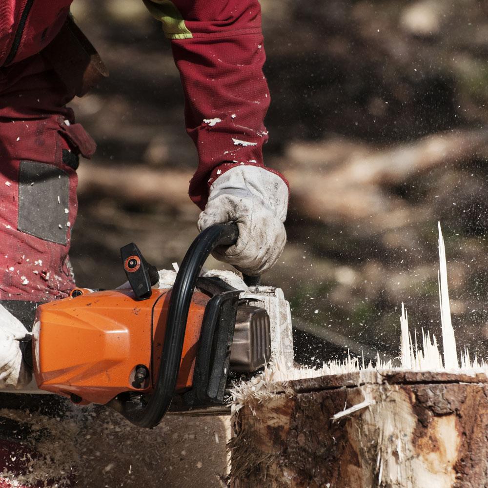 Stump & Tree Removal Service